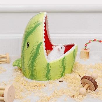 PopetPop Hamster Ceramic Hideout Review