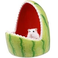 PopetPop Hamster Ceramic Hideout Summary