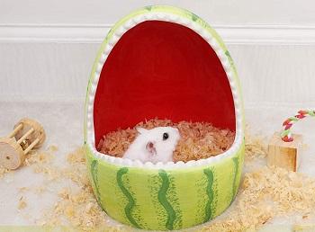 PopetPop Hamster Ceramic Hideout