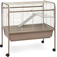 Prevue Hendryxs Cocoa & Cream Small Animal Cage Summary