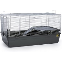 Prevue Universal Small Animal Home Summary