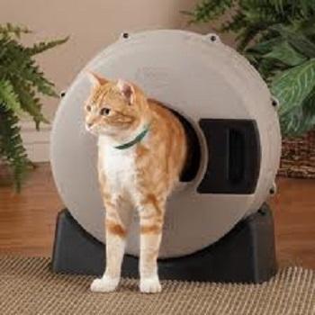 Smart Choice Pet Litter Spinner
