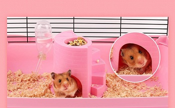 Yueunishi Pink Castle Hamster Cage Tower Review