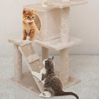 67i Kitten And Small Cats Tree Review