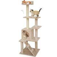67i Kitten And Small Cats Tree Summary