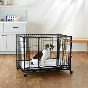 AmazonBasics Heavy Duty Stackable Pet Kennel