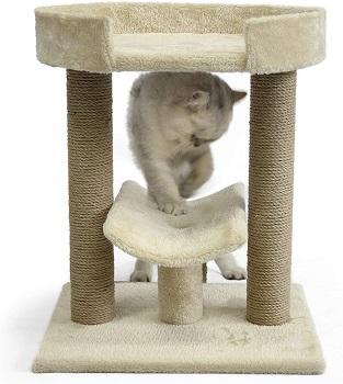 AmazonBasics Platform Cat Tree Review