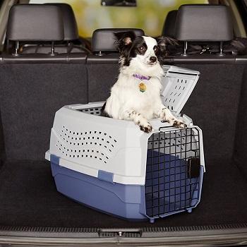 AmazonBasics Two-Door Pet Travel Carrier