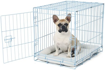 Carlson Blue Metal Dog Crate