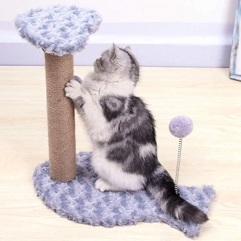 Cat Scratching Post Purple Small Review