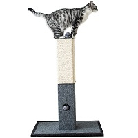 Catry Cat Tree Summary