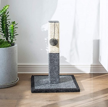 Catry Scratching Post review
