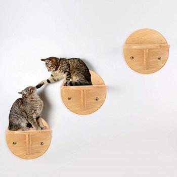 Cjupzi Wall Mounted Cat Tree Playground Review