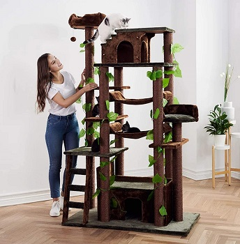 Cozy Cats Furniture Tower Review
