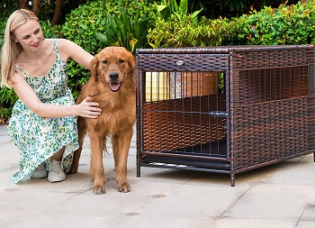 DEStar Heavy Duty Dog Crate