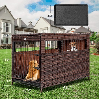 DEStar PE Rattan Wicker Pet Dog Cage Crate Review