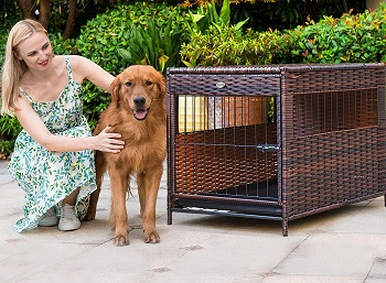 DEStar PE Rattan Wicker Pet Dog Cage Crate