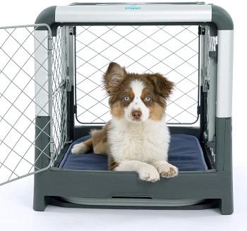 Diggs Revol Dog Crate