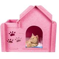 GEX Pink Cat Condo Summary