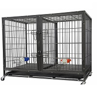 BEST HEAVY DUTY DOUBLE CRATE FOR 2 DOGS Summary