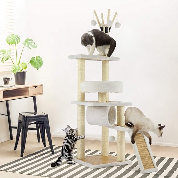 Himimi Scratching Activity Tree Review