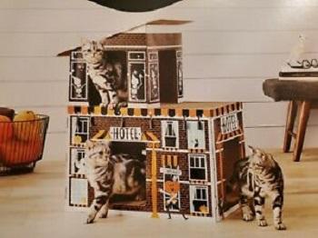 Hyde & EEK! Hotel Cat Scratcher Review