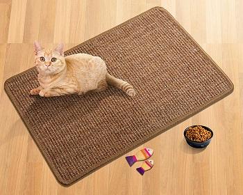 LSAIFATER Cat Scratcher review