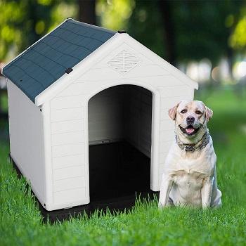 LUCKYERMORE Dog House