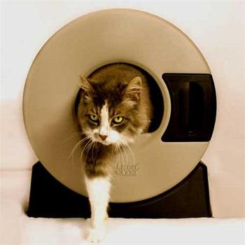 Litter Spinner Easy Cat