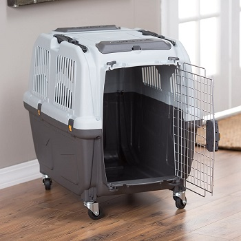 BEST MEDIUM DOG CAGE FOR FLYING