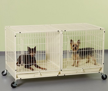 Modular Dog Cage Review