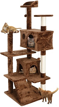 Nova Microdermabrasion Cat Tree Brown