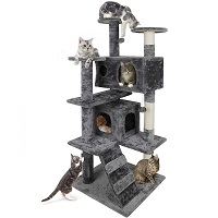 Nova Microdermabrasion Cat Tree Summary
