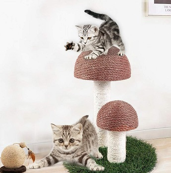Octagon Cat Scratching Post review