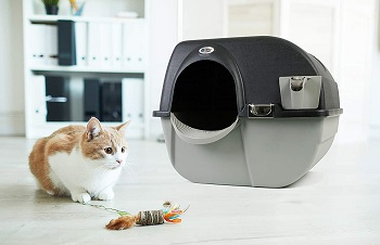 Omega Paw EL-RA20-1 Cleaning Litter Box Review