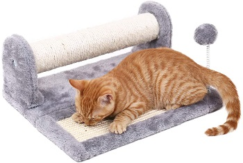 PAWZ Scratching Post review