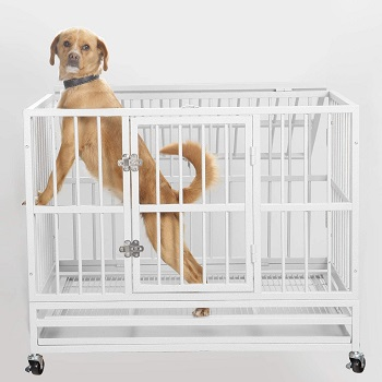 PUPZO Heavy Duty Dog Cage Review