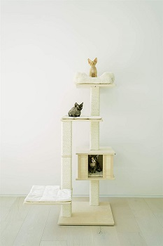 Pawmona Multi-Level Cat Tree Review