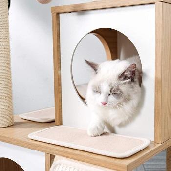 Pawz Pretty Cat Furniture