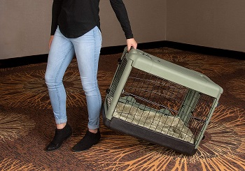 Pet Gear 4 Door Steel Crate Review