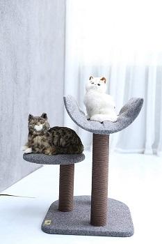 Pet Pals Short Cat Tree Review