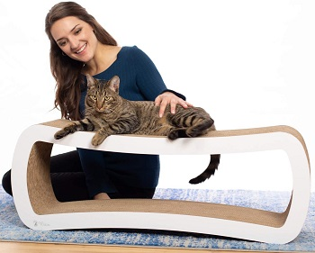 PetFusion Scratcher review