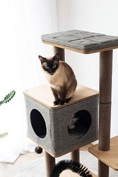 Petpals Nice Cat Furniture Review
