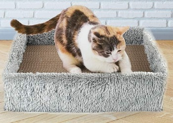 PrimePets Bed Review