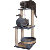 TGHY Activity Tree For Playful Cats Summary