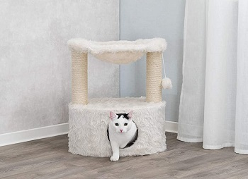 Trixie Scratching Post Review