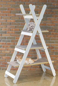 Zoovila Foldable Climbing Cat Tree Review