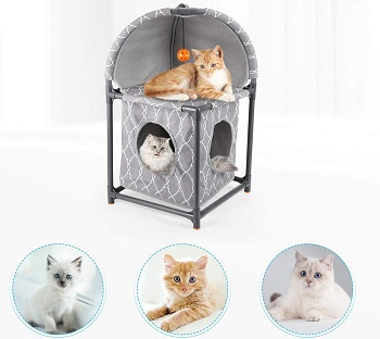 isYoung 2-Tier Plastic Cat Condo Review