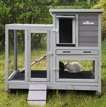 Aivituvin Hutch review