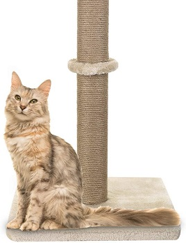 Akarden Scratching Post review
